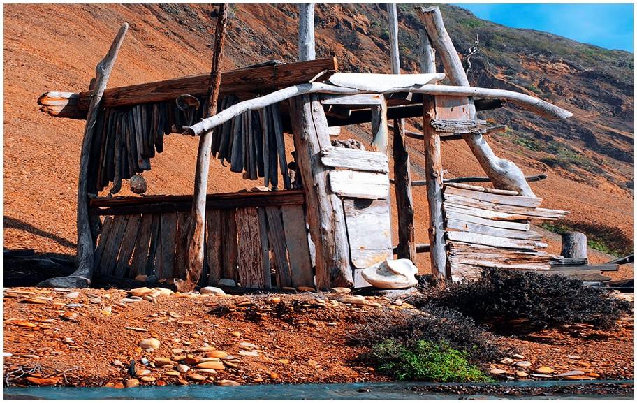 A Driftwood Cabin